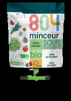 804® Minceur Soupe Silhouette Bio Sachet/180g à Poitiers