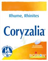 Boiron Coryzalia Comprimés Orodispersibles à Poitiers