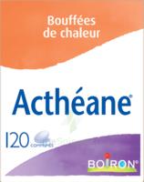Boiron Acthéane Comprimés B/120 à Poitiers